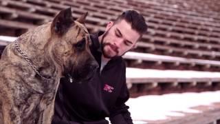 Fight Night Broomfield: Brandon Thatch - Puppy Love