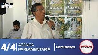 Audiencia Pública Descentralizada Chanchamayo - Junín 4/4 (24/06/19)