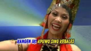 Kangen Sing Kebales Gandrung Mudaiyah MP3
