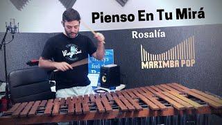 Pienso en tu Mirá (Marimba Pop Cover) - by Rosalía