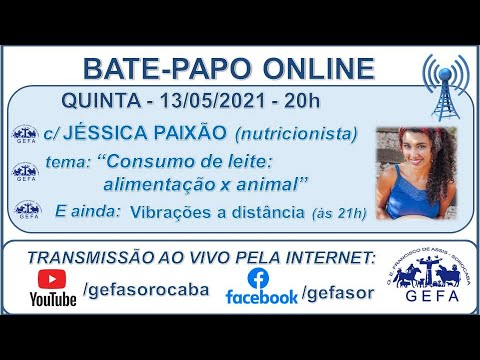 Assista: Palestra online - c/ JÉSSICA PAIXÃO (13/05/2021)