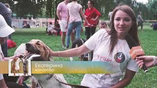 """Репортаж """"Собаки, которые любят"""" - Домашние животные"""