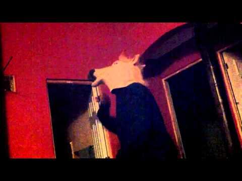 Caballo Bailando One Night In Bangkok - Vinylshakerz