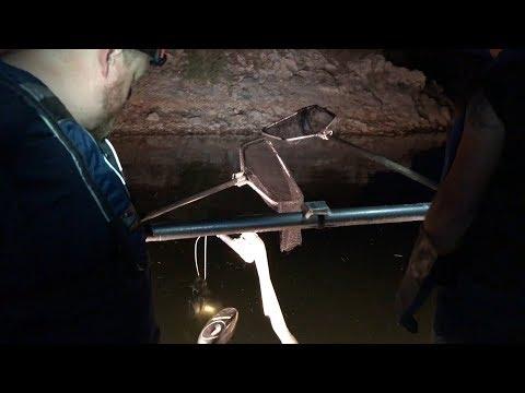 Electrofishing At Alamo Lake