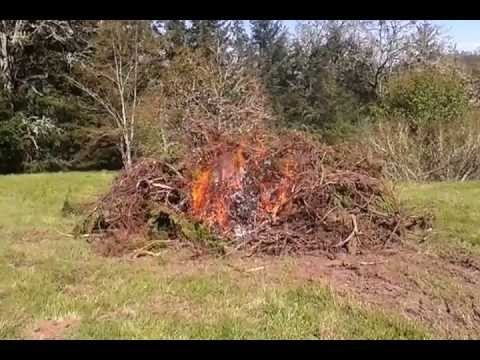 The Dangers Of Burning A Brush Pile