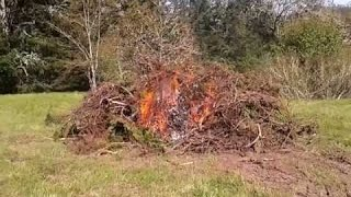 When burning a brush pile, there are a few things to consider. When...