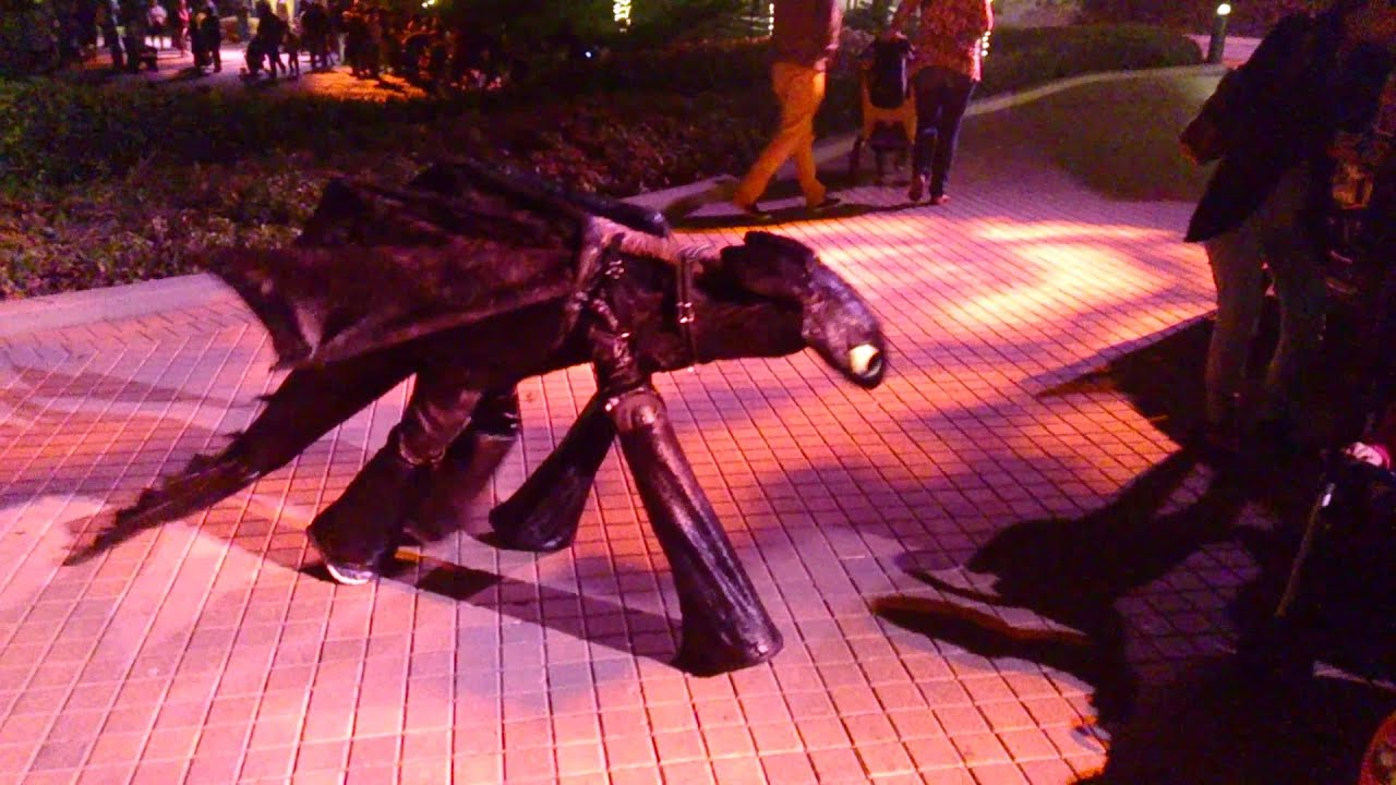 Toothless Dragon Halloween Costume