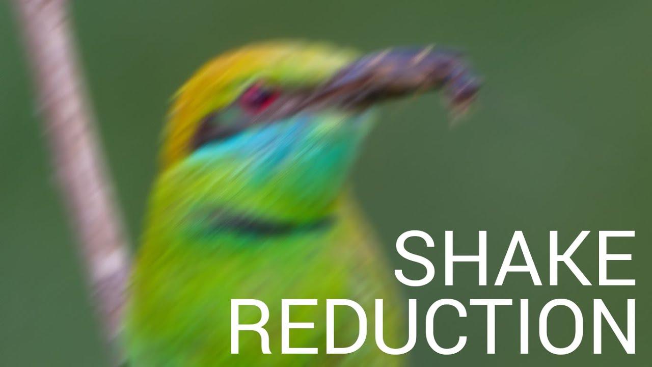 Piccure Plugin Magically Reduces Camera Shake, Beats Adobe ...