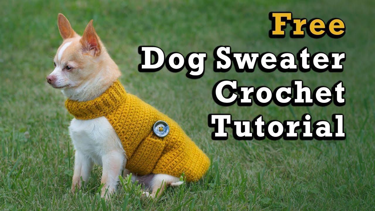 Crochet Cat Blanket Pattern | The Crochet Crowd | 720x1280