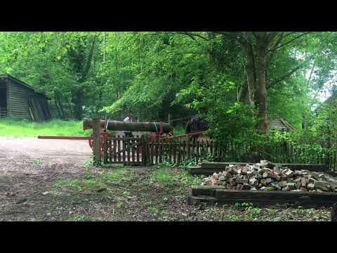 Horse-drawn timber forwarder or wagon in...