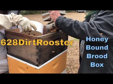 Beekeeping With Blurry Face and The Old Man  -  Spring Hive Box Inspections