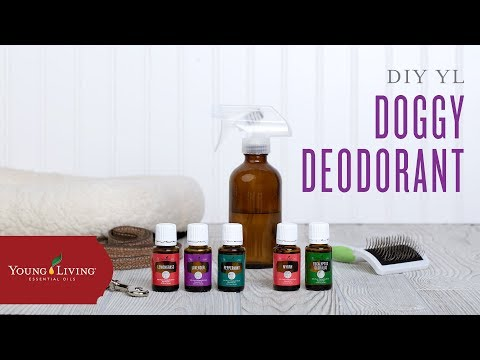 diy-doggy-deodorant-with-young-living-essential-oils