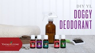 DIY Essential Oil Doggy Deodorant  Young Living Essential Oils