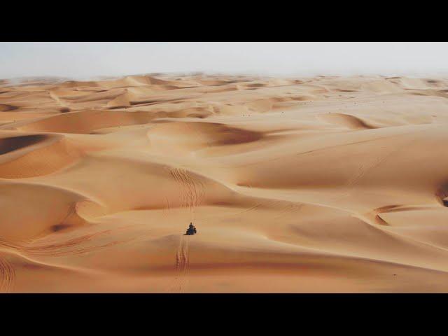 Martin Garrix & Third Party - Lions In The Wild
