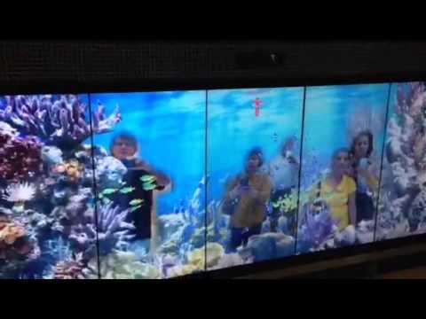 Interactive at Bangkok Suvarnabhumi Airport