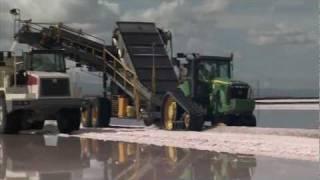 Salt Harvest: America
