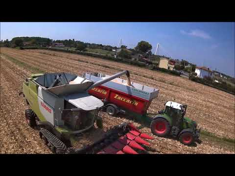 Repeat Claas Lexion 780 BLACK Limited Edition | 4K