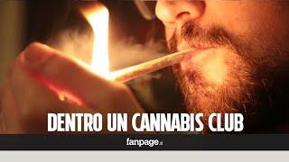 Siamo stati in un cannabis club a Barcellona: