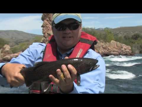 Wildside Adventures Travel Service - Chimehuin River Patagonia Argentina