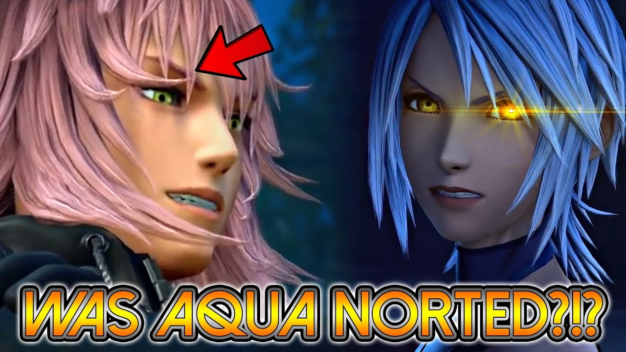 Kingdom Hearts 3 Aqua Nort Explained Marluxia