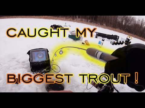 🐟 🐟 🐟 Catching Hog Trout Ice Fishing With Friends! 🐟 🐟 🐟 Big Fish In Alberta Canada!
