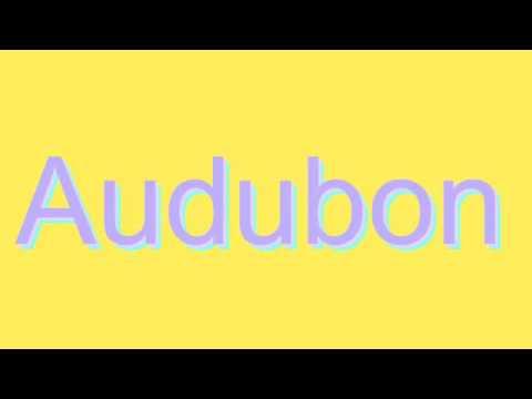 How to Pronounce Audubon