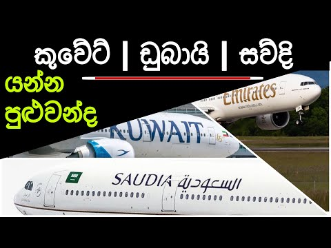 Airport around the globe | Travel update