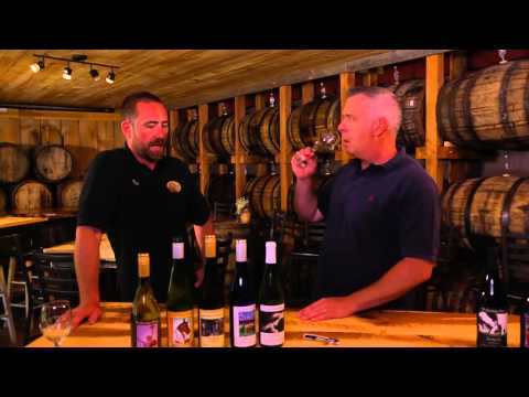 Wine About the Weather - Episode 0: The Saratoga Winery