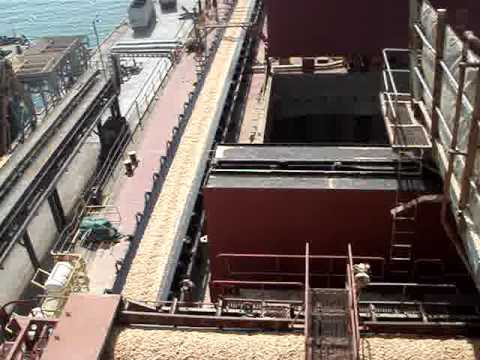 Woodchip Carrier  while Discharging.