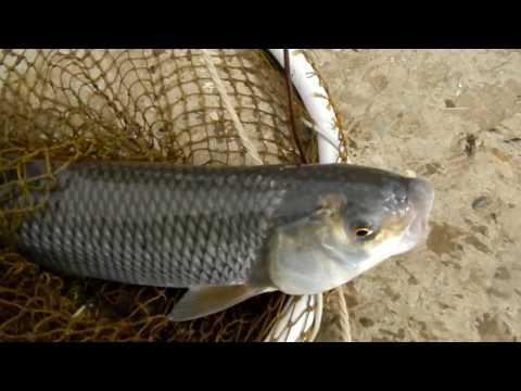 все рыболовные магазины дагестана