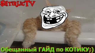 Обещаный ГАЙД по коту!!!