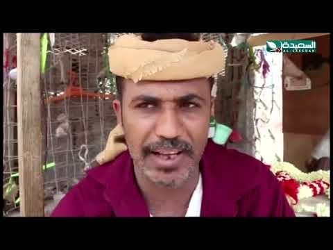 حراج سوق بيع الفل اللحجي من يتحكم باسعاره