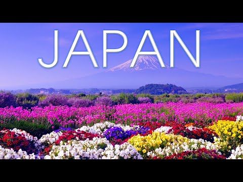 Top 15 Best Places To Visit In Japan