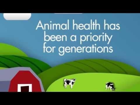 Protecting animal health and protecting human health