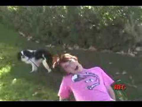 dog love. from YouTube · Duration:  1 minutes 29 seconds