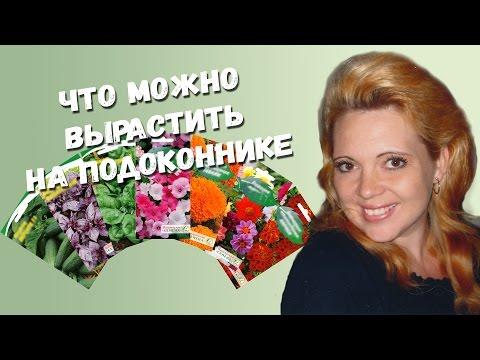 Растения и цветы floretsru