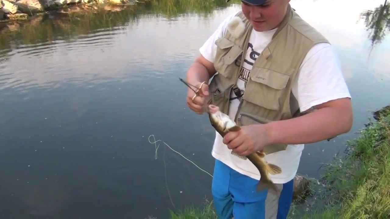 Trout fishing pennsylvania 3 2012 fly fishing youtube for Pa out of state fishing license