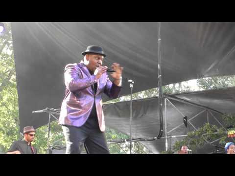 alpheus (live) avec roberto sanchez a la guitare au garance reggae festval 2014