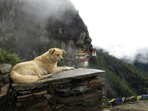 Bhutan - Journey into the Land of Serenity
