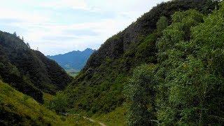 Алтай ущелье Че - Чкыш Путешествия и природа
