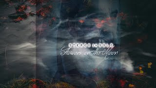 Watch Stereo In Solo Flowers On The Moon video
