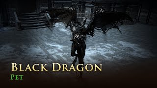 Path of Exile: Black Dragon Pet