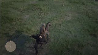 No Visitors Allowed Red Dead Redemption 2