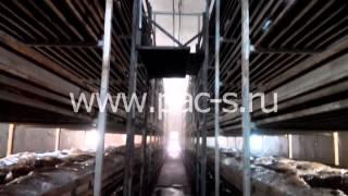 Грибной цех.Поддержание влажности воздуха с помощью системы тумана высокого давления(, 2014-12-19T21:15:19.000Z)