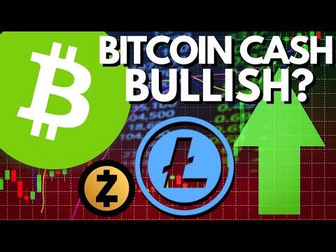Does BCH FUD Make It BULLISH? Bitcoin Cash Halving, Developer Fund Tax