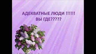 #РЕАЛ 225 Эквилитор Кто виноват и что делать!? 4
