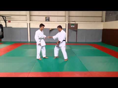 Heian Shodan's Bunkai - Defending yourself with a basic kata - Part 5