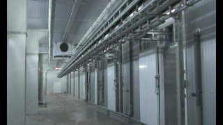 В завершающей стадии — строительство нового мясоперерабатывающего завода «ПромАгро»