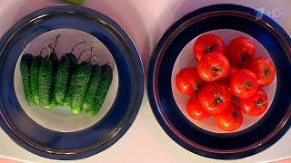 Жить здорово! Что здоровее? Огурец против помидора. (09.02.2016)