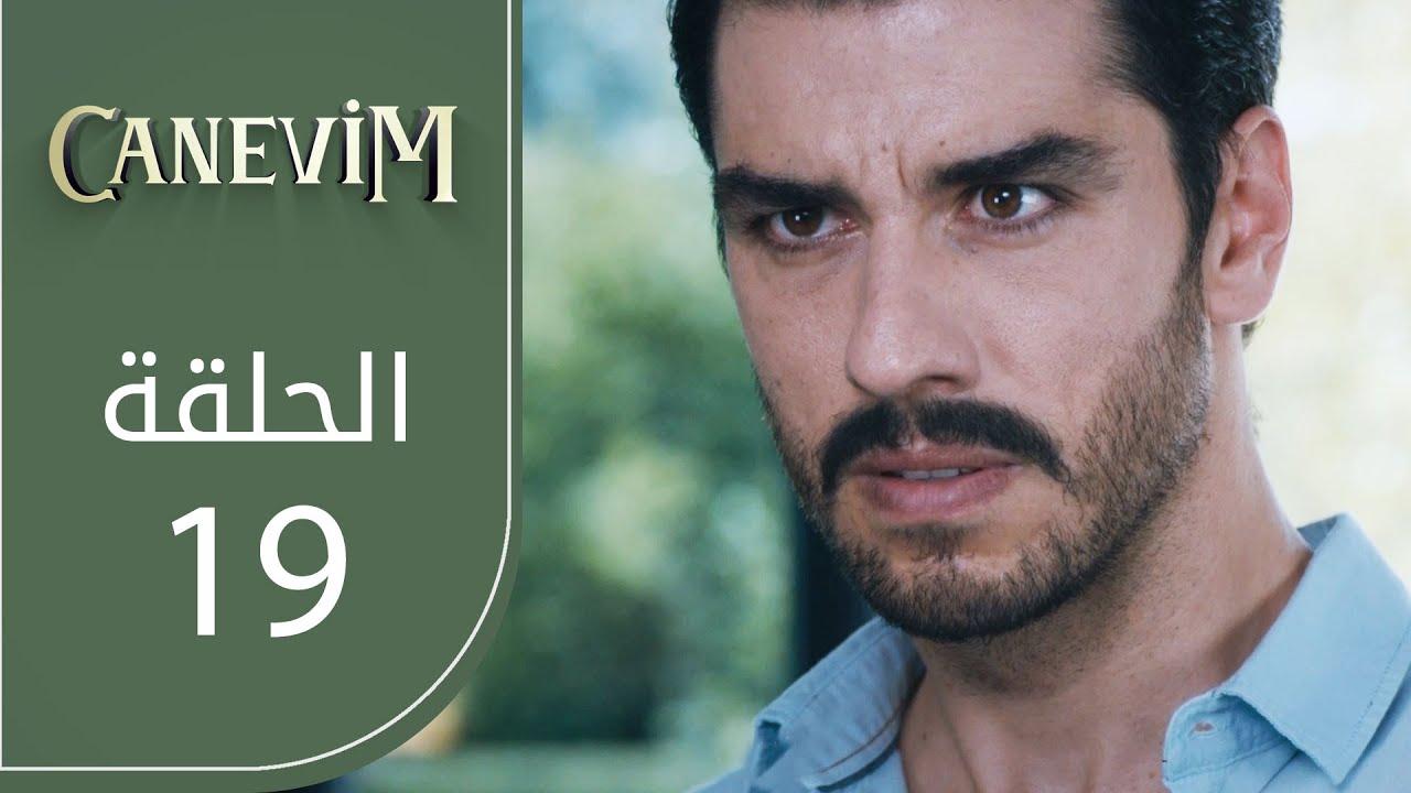 قلبي | الحلقة 19 | atv عربي | Canevim